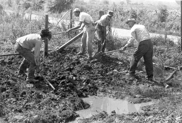 an introduction to the history of farmers Introduction the south african organizations that could help enhance the development of small-scale farmers 22 history of agricultural cooperatives.